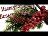 «Красивые Фото • fotiko.ru» под музыку Верка Сердючка - ٭٭٭Новогодняя песня٭٭٭    . Picrolla